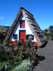 A frame cabin, thatched roof, cute cottage